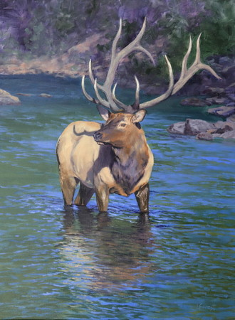 Rocky Mountain Royalty - 24 x 18